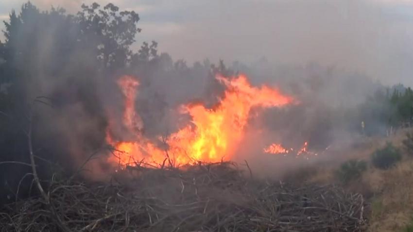 ВИДЕО: Заради горещото време в Русенско нараства опасността от пожари
