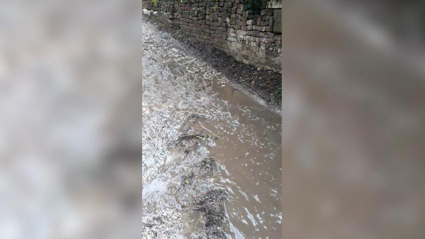 """ВИДЕО: Нов проблем на """"Трети март"""" в Русе: Неправилен наклон води дъждовната вода до частни имоти"""